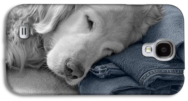 Golden Retriever Dog Forever On Blue Jeans Monochrome Galaxy S4 Case