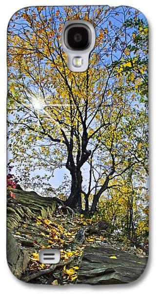 Golden Tree Galaxy S4 Case by Christina Rollo