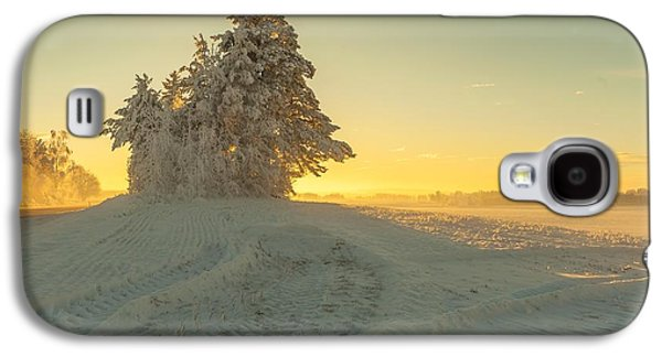 Golden Winter Galaxy S4 Case