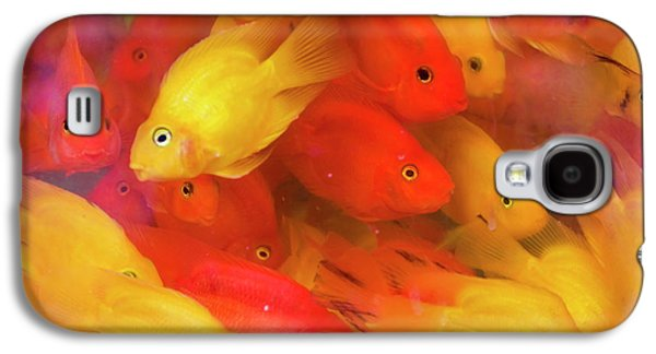 Goldfish At Goldfish Market, Hong Kong Galaxy S4 Case by Peter Adams