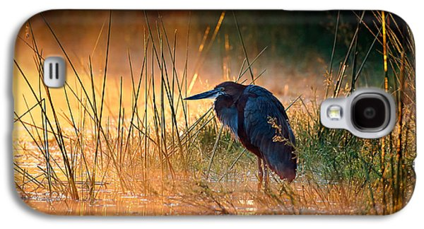 Goliath Heron With Sunrise Over Misty River Galaxy S4 Case by Johan Swanepoel