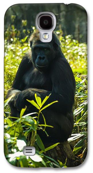 Gorilla Sitting On A Stump Galaxy S4 Case