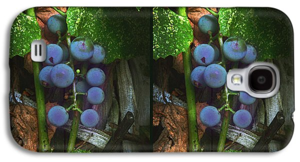 Grapes On The Vine - Gently Cross Your Eyes And Focus On The Middle Image Galaxy S4 Case by Brian Wallace