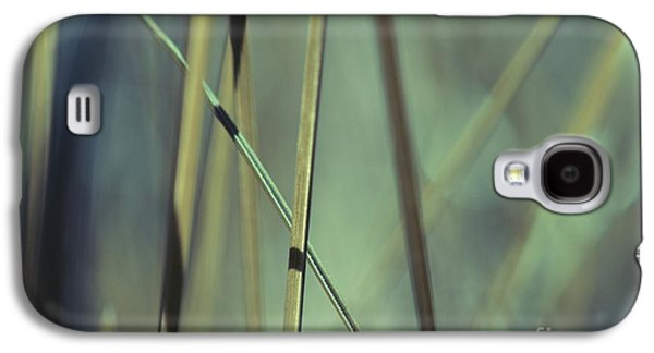 Grass Abstract - 03439gr Galaxy S4 Case by Variance Collections