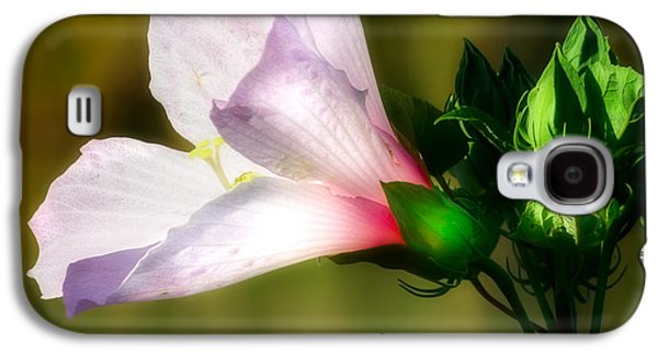Grasshopper And Flower Galaxy S4 Case by Mark Andrew Thomas