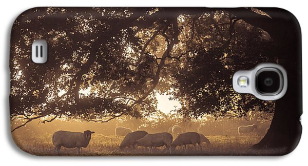 Grazing Under The Tree Galaxy S4 Case by Chris Fletcher
