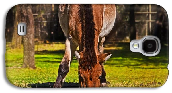 Grazing With An Attitude Galaxy S4 Case