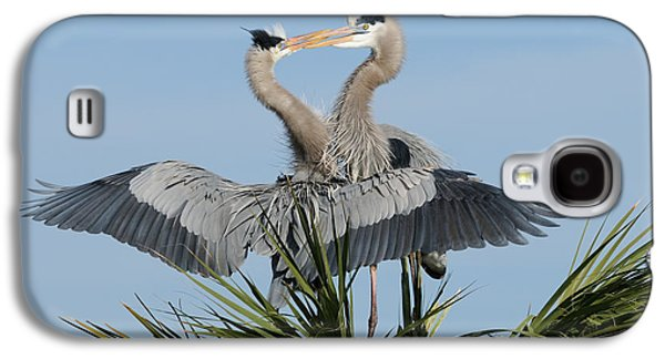 Great Blue Herons Courting Galaxy S4 Case