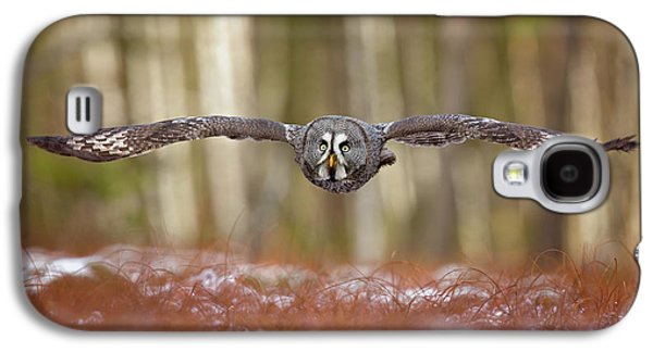 Great Grey Owl Galaxy S4 Case