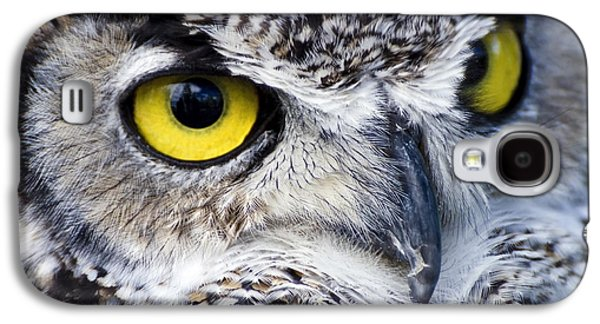 Great Horned Closeup Galaxy S4 Case
