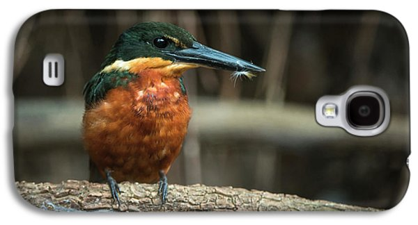Green And Rufous Kingfisher Galaxy S4 Case by Pete Oxford