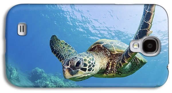 Turtle Galaxy S4 Case - Green Sea Turtle - Maui by M Swiet Productions