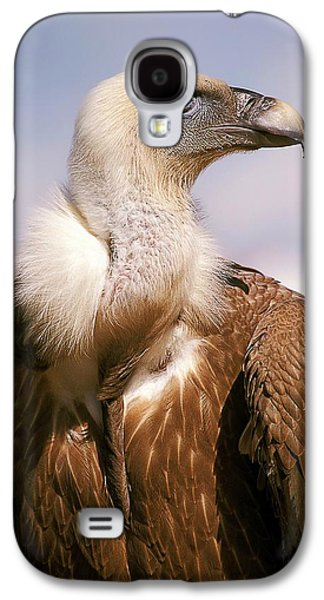 Griffon Galaxy S4 Case - Griffon Vulture (gyps Fulvus) by Photostock-israel