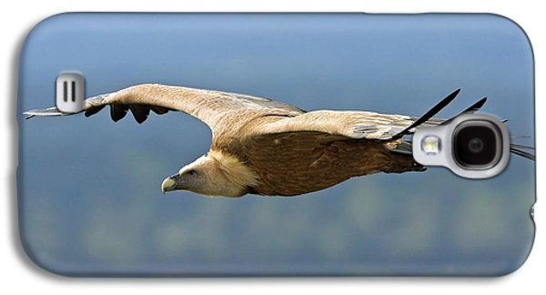 Griffon Vulture In Flight Galaxy S4 Case