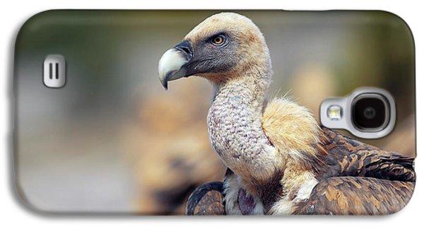 Griffon Galaxy S4 Case - Griffon Vulture by Nicolas Reusens