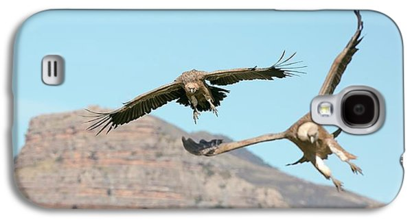 Griffon Vultures Flying Galaxy S4 Case