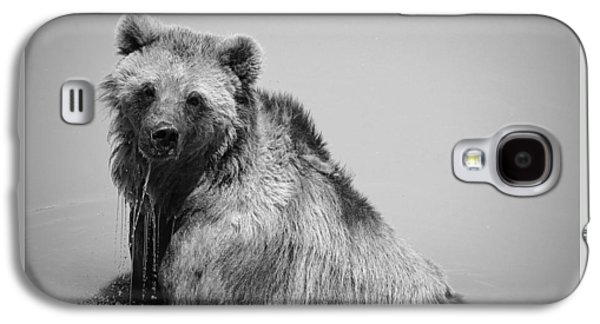 Grizzly Bear Bath Time Galaxy S4 Case