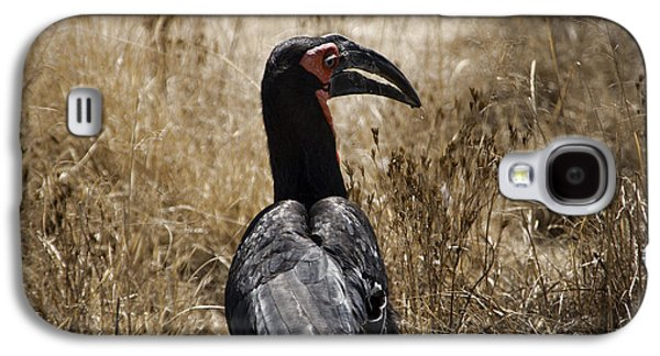 Ground Hornbill-africa Galaxy S4 Case by Douglas Barnard