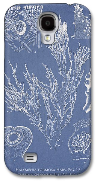 Halymenia Formosa And Eucheuma Spinosum Galaxy S4 Case by Aged Pixel