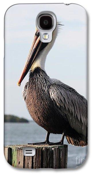 Handsome Brown Pelican Galaxy S4 Case by Carol Groenen