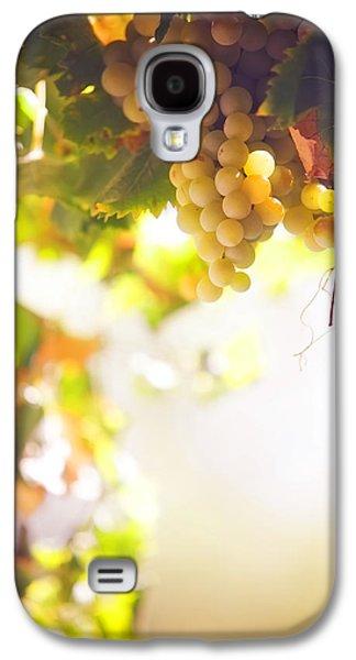 Harvest Time. Sunny Grapes I Galaxy S4 Case by Jenny Rainbow