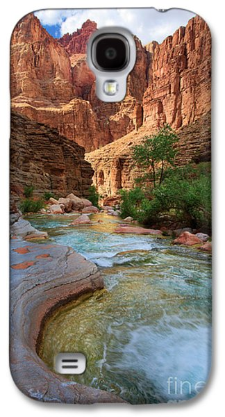 Havasu Creek Galaxy S4 Case by Inge Johnsson