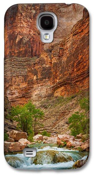 Havasu Creek Number 3 Galaxy S4 Case by Inge Johnsson