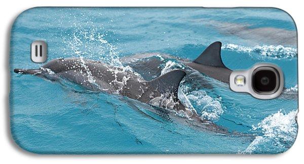 Hawaiian Spinner Dolphin / Stenella Galaxy S4 Case by Daisy Gilardini