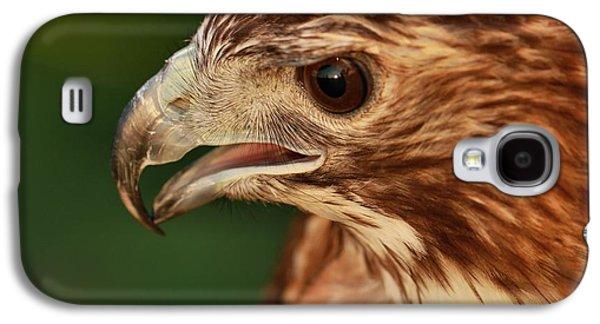 Hawk Eyes Galaxy S4 Case by Dan Sproul