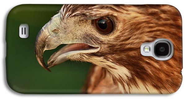 Hawk Eye Galaxy S4 Case by Dan Sproul