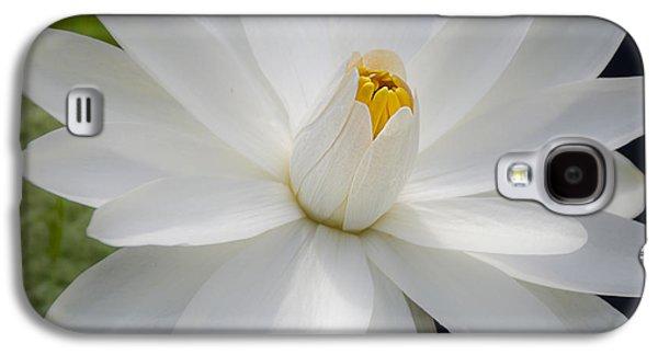 Heavenly Aquatic Bloom Galaxy S4 Case