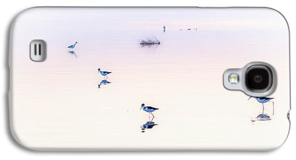Heiwa I Galaxy S4 Case by Peter Tellone