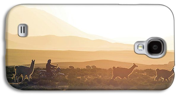 Herd Of Llamas Lama Glama In A Desert Galaxy S4 Case by Panoramic Images