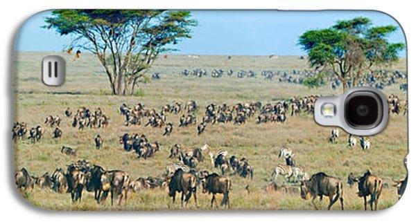 Herd Of Wildebeest And Zebras Galaxy S4 Case