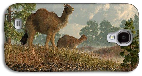 High Arctic Camel Galaxy S4 Case by Daniel Eskridge