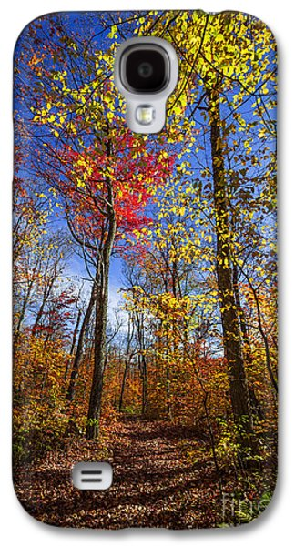Hiking Trail In Fall Forest Galaxy S4 Case