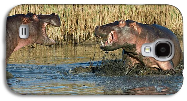 Hippopotamus Confrontation Galaxy S4 Case by Tony Camacho