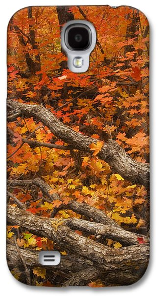 Holding Back Galaxy S4 Case by Peter Coskun