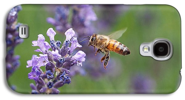 Honey Bee And Lavender Galaxy S4 Case