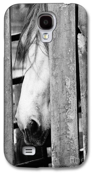 Horse Board 3 Galaxy S4 Case by Lynda Dawson-Youngclaus