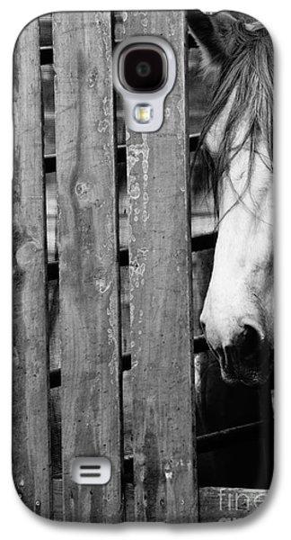 Horse Board 4 Galaxy S4 Case by Lynda Dawson-Youngclaus