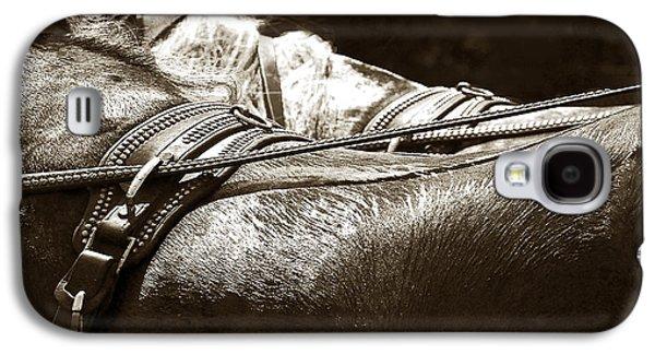 Horse Brass Galaxy S4 Case by Judy Wood