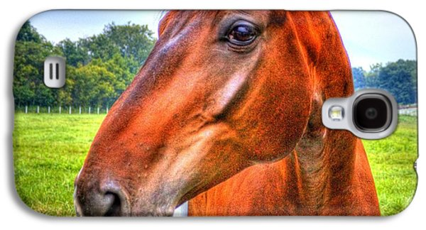 Horse Closeup Galaxy S4 Case
