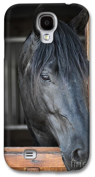 Horse In Stable Galaxy S4 Case