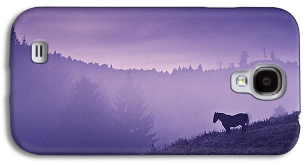 Horse In The Mist Galaxy S4 Case