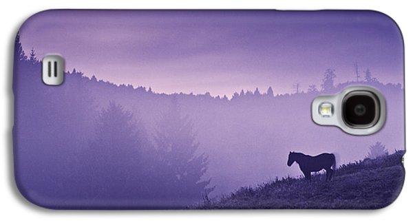 Horse In The Mist Galaxy S4 Case by Yuri Santin