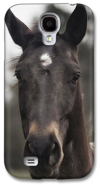 Horse With Gentle Eyes Galaxy S4 Case