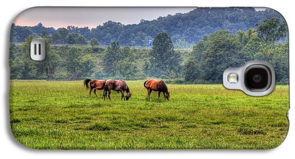 Horses In A Field 2 Galaxy S4 Case