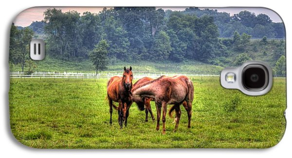 Horses Socialize Galaxy S4 Case