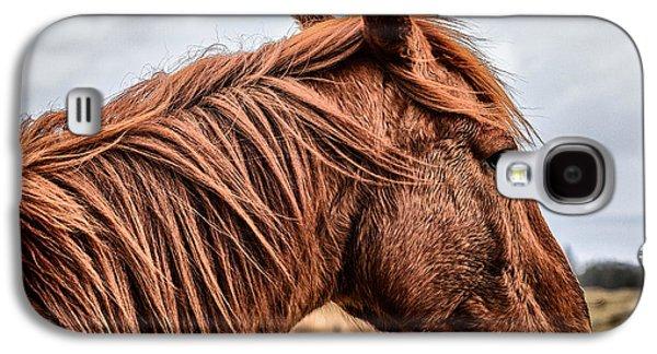 Horse Galaxy S4 Case - Horsey Horsey by John Farnan
